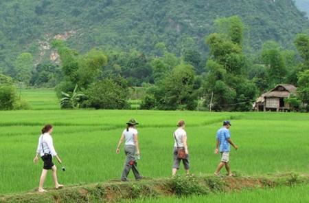 Hike through the rice paddies of Mai Chau