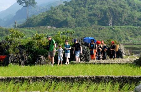 Walking through the rice paddies in Sapa