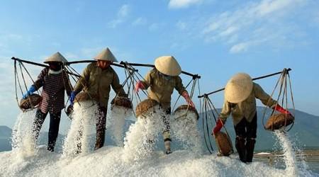 Bach Long Salt Making Village