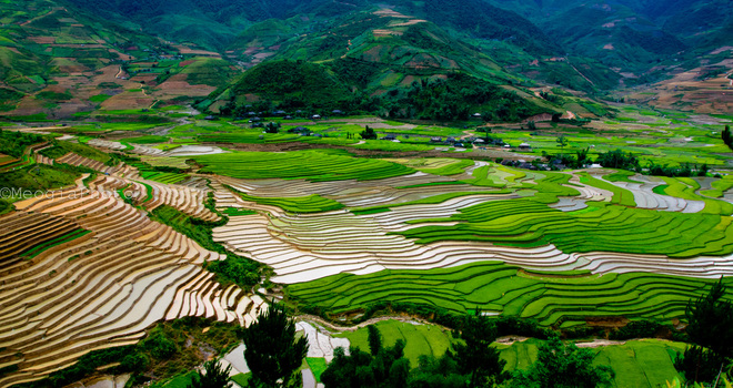 Valley High Pha Mu Cang Chai district, Yen Bai pour water into the season with immense fields also mix water of rice paddies were up high.