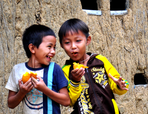 Two boys in Ba Dong Commune, Ba mountainous district just shared a laugh forest fruit fun side of the mud-walled cottage his family.