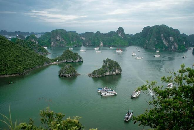 Halong Bay is located in North-East region of Vietnam including the sea and islands areas of Ha Long City, Cam Pha and a part of Van Don island district of Quang Ninh province. Bay has twice been recognized by UNESCO as a world natural heritage of aesthetic value (1994) and the value of geology and geomorphology (2010).