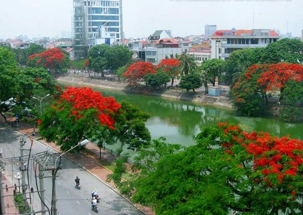 Hai Phong, Phoenix flower city