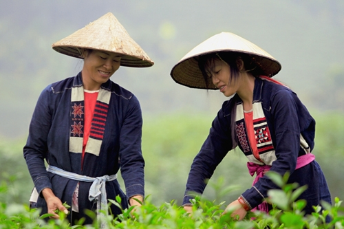San Chay girls in North East Vietnam