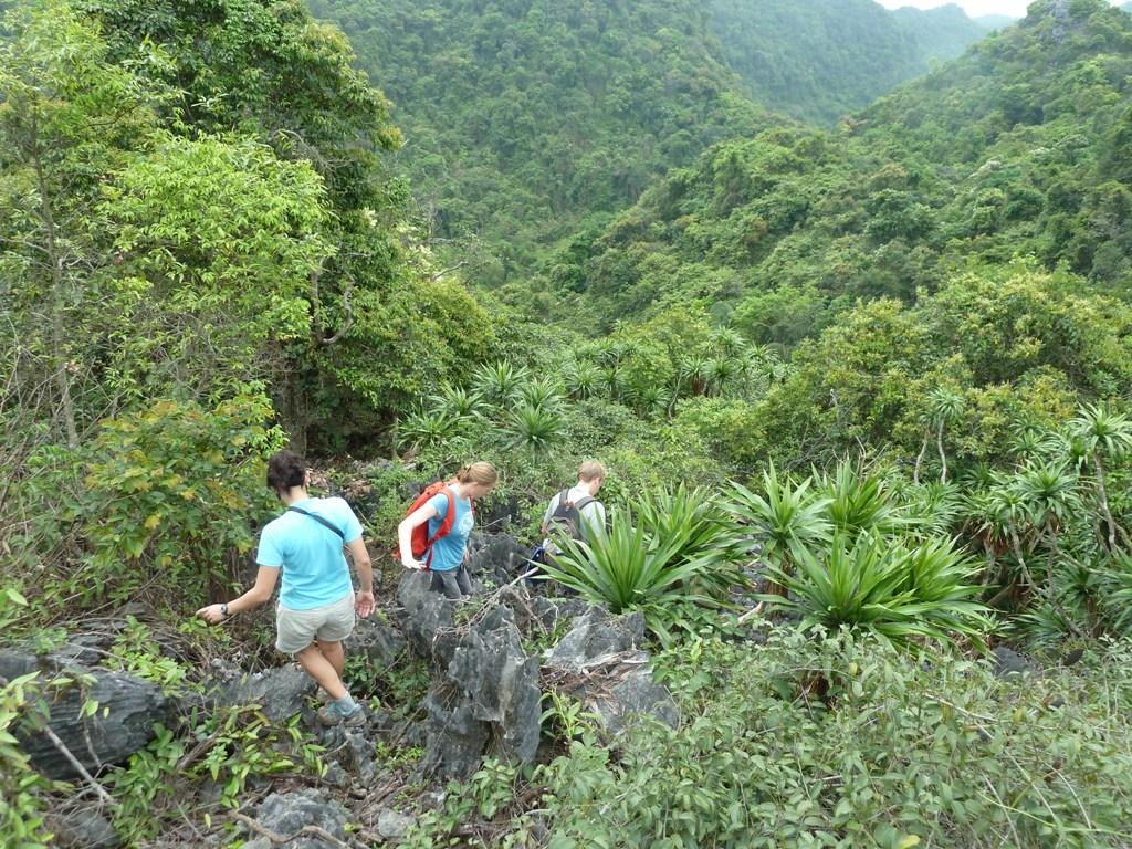 Treking in Cat Ba National Park in Hai Phong