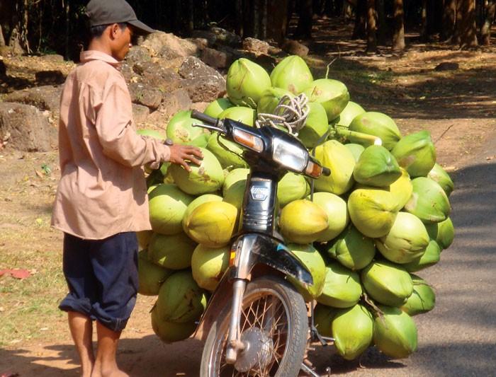 Cambodia fruit laden bike