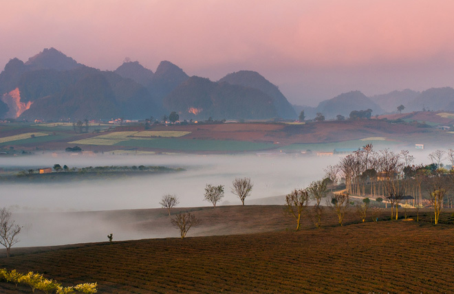 The vast grasslands, tea hills seem to immerse in the quiet space of the peaceful morning. Because of the specific topography, the fog regularly appears and lasts from the autumn until the end of spring in Moc Chau highland.