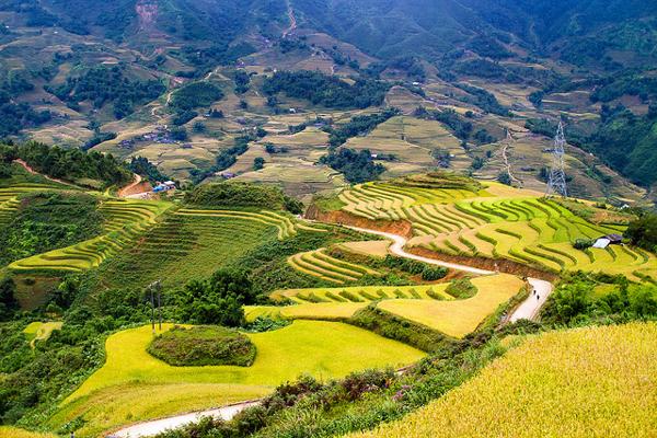Best time to visit the Northwest of Vietnam
