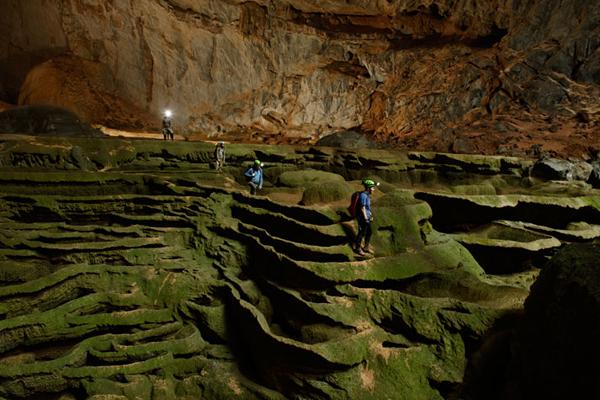 Algae skinned maze inside the Cave