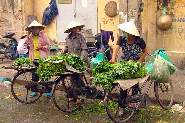Vegetable street vendors with bicycles