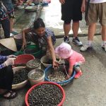 visit local market at dong ngac village with family