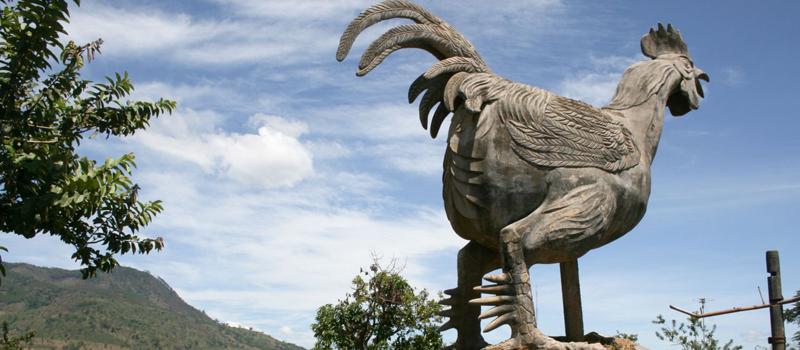 A statue of chicken in Lat Village, Dalat