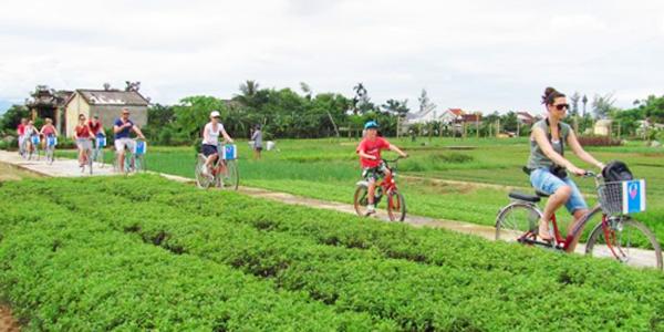 Biking through the garden and vegetable village in Hoi