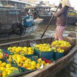 Boat full of fruit in Cai Rang Floating Market