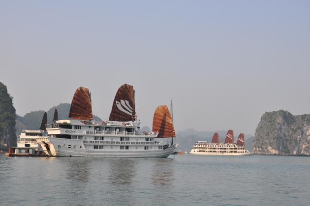 Cruise along the majestic Halong Bay
