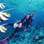 Dive and discover the colorful coral reefs in Nha Trang Bay