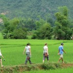 Hike through the rice paddies of Mai Chau