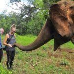 Mondulkiri Elephant Sanctuary