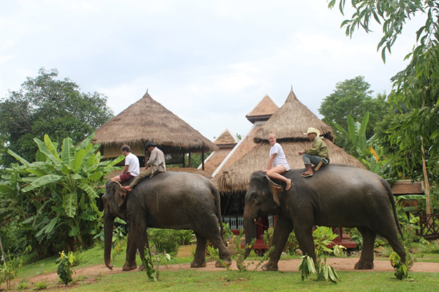 Phou asa elephant riding