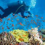 Scuba diving at Nha Trang vietnam