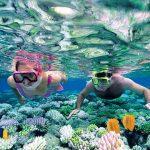 Snorkeling in Mun island, Nha Trang
