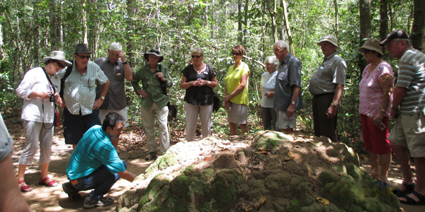 The guide shows the tourist the entrances and structure of Cu Chi Tunnels