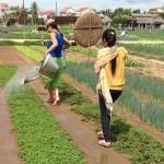 Tra Que Organic Gardens