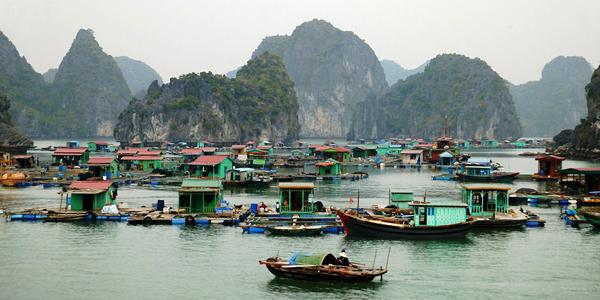 Visit Cua Van Fishing Village, Halong Bay
