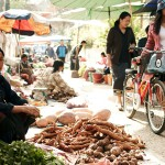 Visit local market to understanding Laos ingredients and pick the food for cooking class