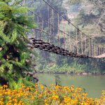 cloud bridge in sapa