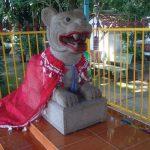 cu lao ong ho tiger island