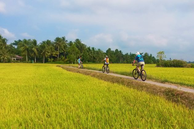cycling through farrm in mekong delta