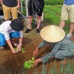 eco-farming tour in hoi an