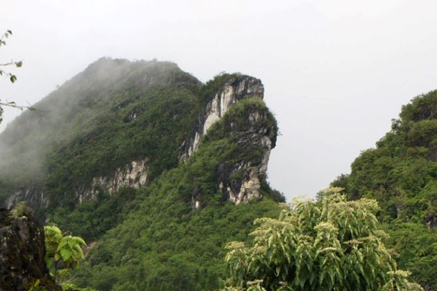 ham rong mountain in sapa lao cai