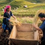 life of local people in sapa