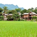 local village in mai chau