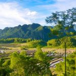 mai chau trekking journey through rice fields