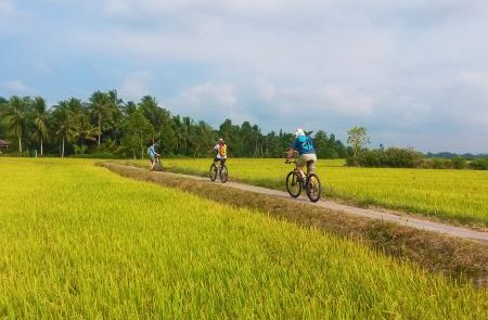 Softly Cycling Mekong Delta Tour – 2 Days