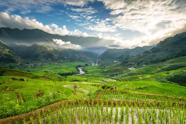 muong hoa valley in sapa lao cai