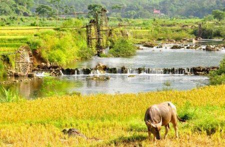 pu luong nature reserve vietnam adventure holidays