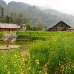 sapa the town on the clouds