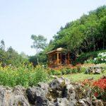 the garden at ham rong mountain