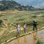 trekking through rice terraces in sapa lao cai