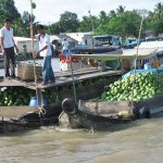 vibrant cai rang market