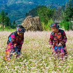 vietnam photo tour 27 days ha giang tour