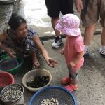 visit a local market at dong ngac village with kids