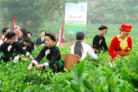 Tea Festival Thai Nguyen, Vietnam