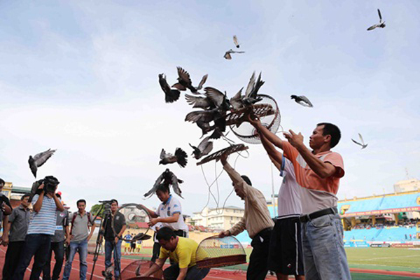 Releasing Pigeons