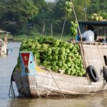 See the rustic life of local people in Mekong Delta