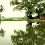 Vietnam Villages Guilds
